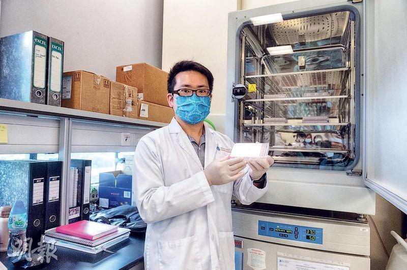 模擬人體培植癌細胞:職員手持的透明容器每一格都注入了小量營養液、一定數目的患者癌細胞,以及一片極小的水溶膠用作癌細胞生長支架。容器會放入後面的儲存櫃14日,櫃內溫度維持在37度、空氣5%為二氧化碳,以模擬人體內環境,讓癌細胞生長。(林靄怡攝)